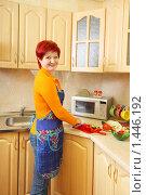 Купить «Женщина на кухне», фото № 1446192, снято 15 декабря 2009 г. (c) Майя Крученкова / Фотобанк Лори