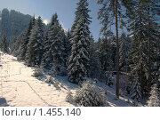 Вид из кабинки горнолыжного подъемника: горнолыжный курорт в Банско (Болгария) Стоковое фото, фотограф ZitsArt / Фотобанк Лори