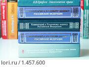 Купить «Книги. Кодексы и комментарии к ним. Библиотека», фото № 1457600, снято 7 февраля 2010 г. (c) Надежда Глазова / Фотобанк Лори