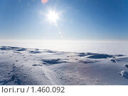 Купить «Ледяная пустыня», фото № 1460092, снято 24 января 2010 г. (c) hunta / Фотобанк Лори