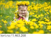 Купить «Девочка с одуванчиками», фото № 1463268, снято 18 мая 2009 г. (c) Юлия Шилова / Фотобанк Лори