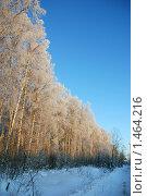 Зимнее утро. Стоковое фото, фотограф Сергей Кудряков / Фотобанк Лори