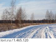 Купить «Зимний день за городом», фото № 1465120, снято 1 января 2010 г. (c) Юрий Синицын / Фотобанк Лори