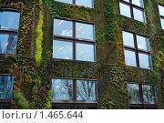 Дом в зелени. Стоковое фото, фотограф Антон Ермолов / Фотобанк Лори