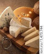 Купить «Сыр», фото № 1473744, снято 12 февраля 2010 г. (c) Goruppa / Фотобанк Лори