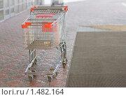 Купить «Тележки в супермаркете», фото № 1482164, снято 20 декабря 2009 г. (c) Воронин Владимир Сергеевич / Фотобанк Лори