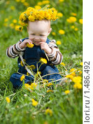 Купить «Малышка в одуванчиках», фото № 1486492, снято 18 мая 2009 г. (c) Юлия Шилова / Фотобанк Лори