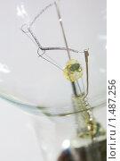 Лампа накаливания крупным планом. Стоковое фото, фотограф Сергей Данилов / Фотобанк Лори