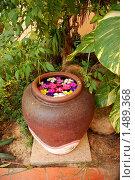 Купить «Декоративный элемент дизайна», фото № 1489368, снято 9 января 2010 г. (c) Лифанцева Елена / Фотобанк Лори