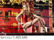Купить «Танцовщица в клубе», фото № 1495640, снято 28 января 2010 г. (c) Raev Denis / Фотобанк Лори