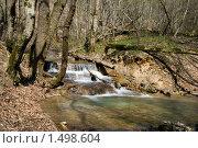 Лесная река. Стоковое фото, фотограф EtoileDeChemin / Фотобанк Лори