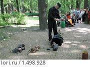 Купить «Артист - кукольник», фото № 1498928, снято 9 июня 2008 г. (c) Parmenov Pavel / Фотобанк Лори
