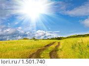 Желтое поле, солнце и дорога в сельской местности. Стоковое фото, фотограф djandre77 / Фотобанк Лори