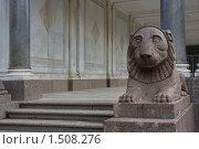 Купить «Лев гранитный», фото № 1508276, снято 28 июля 2009 г. (c) Николай Богоявленский / Фотобанк Лори