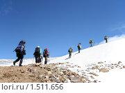 Купить «Цепочка альпинистов поднимается на снежный перевал в горах. Приэльбрусье, Кавказ, Кабардино-Балкария.», фото № 1511656, снято 11 августа 2009 г. (c) Воу-воу-воу пам-па-рам / Фотобанк Лори