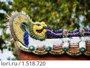 Купить «Дракон», фото № 1518720, снято 21 декабря 2008 г. (c) Алексей Грустливый / Фотобанк Лори