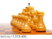 Купить «Шахматы», фото № 1519400, снято 1 февраля 2010 г. (c) Екатерина Тарасенкова / Фотобанк Лори