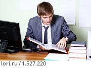 Купить «Молодой мужчина за рабочим столом в офисе», фото № 1527220, снято 31 октября 2009 г. (c) Андрей Аркуша / Фотобанк Лори