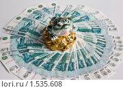 Купить «Трёхлапая жаба и деньги», фото № 1535608, снято 7 февраля 2010 г. (c) Олег Хархан / Фотобанк Лори