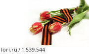 Купить «Тюльпаны и георгиевская лента. 9 мая», фото № 1539544, снято 23 сентября 2018 г. (c) Екатерина Тарасенкова / Фотобанк Лори