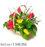 Купить «Корзинка с цветами», фото № 1548956, снято 4 марта 2010 г. (c) Максим Лоскутников / Фотобанк Лори