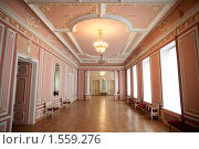 Малый зал филармонии, Санкт-Петербург. Стоковое фото, фотограф Антон Соколов / Фотобанк Лори