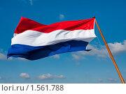 Купить «Флаг Нидерландов», фото № 1561788, снято 6 марта 2010 г. (c) Петр Кириллов / Фотобанк Лори