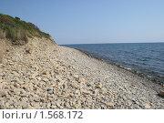 Утро на Черном море. Стоковое фото, фотограф Oksana Oleneva / Фотобанк Лори