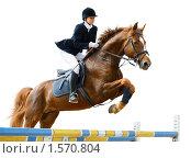 Купить «Конкур - молодая девушка прыгает на лошади через барьер», фото № 1570804, снято 16 мая 2009 г. (c) Абрамова Ксения / Фотобанк Лори
