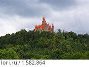 Замок Боузов, Чехия (2008 год). Стоковое фото, фотограф Stanislav Kharchevskyi / Фотобанк Лори