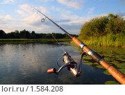 Купить «Рыбалка со спиннингом на озере», фото № 1584208, снято 2 августа 2008 г. (c) Михаил Коханчиков / Фотобанк Лори