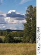 Купить «Сельский пейзаж», фото № 1585864, снято 30 июля 2008 г. (c) Николай Богоявленский / Фотобанк Лори