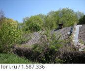 Купить «Домик в лесу», фото № 1587336, снято 4 мая 2009 г. (c) Дмитрий Шепель / Фотобанк Лори