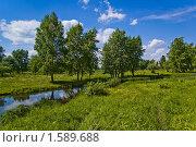 Купить «Деревенская идиллия», фото № 1589688, снято 15 июня 2008 г. (c) Александр Рябов / Фотобанк Лори