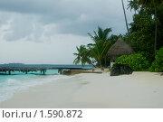 Купить «Пляж на Мальдивах», фото № 1590872, снято 23 декабря 2009 г. (c) Ольга Волкова / Фотобанк Лори