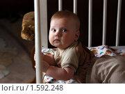 Купить «Ребенок в кроватке», фото № 1592248, снято 25 декабря 2008 г. (c) Андрей Аркуша / Фотобанк Лори