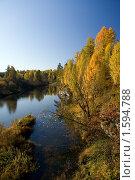 """Купить «Парк """"Оленьи ручьи""""», фото № 1594788, снято 3 октября 2008 г. (c) Дмитрий Ковязин / Фотобанк Лори"""