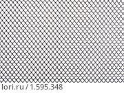 Купить «Перфорированный металл», фото № 1595348, снято 28 марта 2010 г. (c) Угоренков Александр / Фотобанк Лори