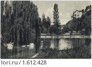 Купить «Дореволюционная открытка. Гагры. Пруд в парке», фото № 1612428, снято 21 марта 2019 г. (c) Staryh Luiba / Фотобанк Лори
