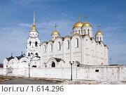 Купола Успенского собора, Владимир (2010 год). Редакционное фото, фотограф Анфимов Леонид / Фотобанк Лори