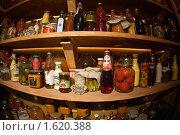 Купить «Полки с припасами», фото № 1620388, снято 9 апреля 2010 г. (c) Светлана Мамонтова / Фотобанк Лори