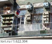 Балкон с скворечниками. Стоковое фото, фотограф sfsfs / Фотобанк Лори
