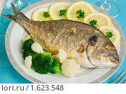 Купить «Жареная рыба с овощами и лимоном», эксклюзивное фото № 1623548, снято 6 апреля 2010 г. (c) Лидия Рыженко / Фотобанк Лори