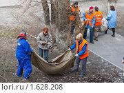 Купить «Уборка улиц  коммунальными службами», фото № 1628208, снято 3 июня 2020 г. (c) Вдовенко Галина / Фотобанк Лори