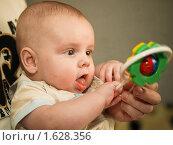 Ребенок с погремушкой. Стоковое фото, фотограф Helen Balakshina / Фотобанк Лори