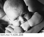 Ребенок на руках. Стоковое фото, фотограф Helen Balakshina / Фотобанк Лори