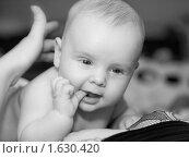Малыш на груди матери. Стоковое фото, фотограф Helen Balakshina / Фотобанк Лори
