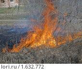 Купить «Лесной пожар. Горит прошлогодняя трава», фото № 1632772, снято 11 апреля 2010 г. (c) Pukhov K / Фотобанк Лори
