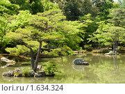 """Купить «Япония, сад возле храма Кинкакудзи (""""Золотой Павильон"""") в городе Киото», фото № 1634324, снято 6 мая 2008 г. (c) Андрей Солодовников / Фотобанк Лори"""