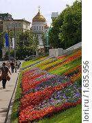 Купить «Храм Христа Спасителя, клумба», фото № 1635956, снято 11 июня 2007 г. (c) Николай Богоявленский / Фотобанк Лори
